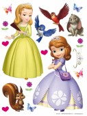 Sticker Disney Sofia the First+Cadou